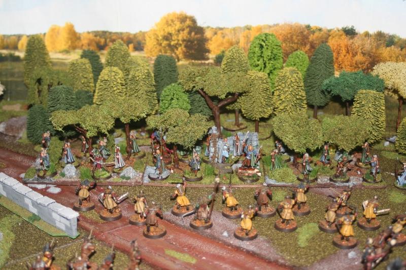 Aragorn et les 5 Armées - Rohan Nuj3idu6