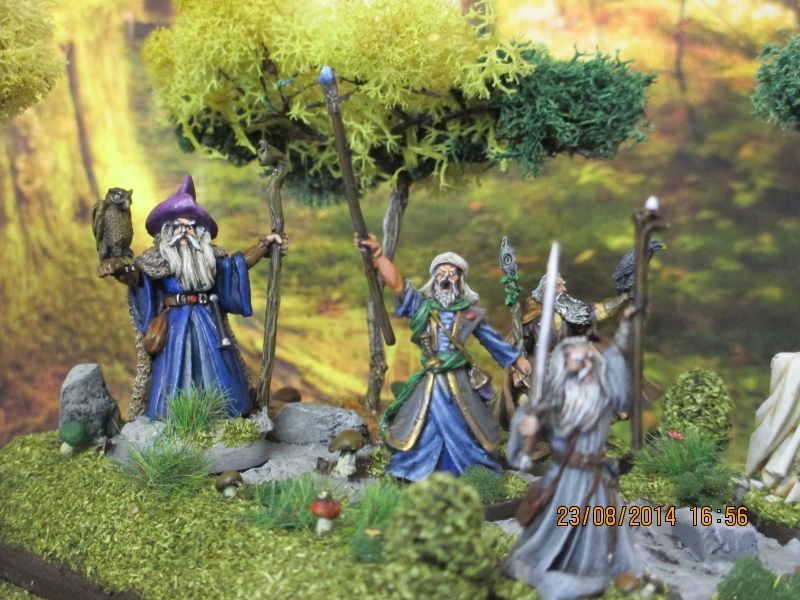 Aragorn et les 5 Armées - Rohan Busnk874