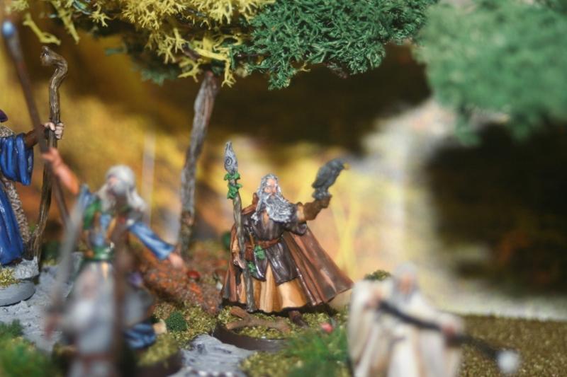 Aragorn et les 5 Armées - Rohan Wr7wfsff