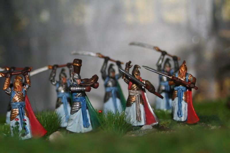 Aragorn et les 5 Armées - Rohan Ndgkwshv