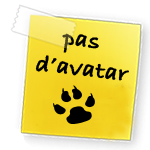 Applications pour Firmwares Noavatar