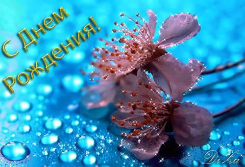 Поздравляем Олечку(Хельга) с днем рождения!!!!! 433213759