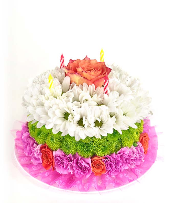 Happy Birthday to EyesHigh! BN541G