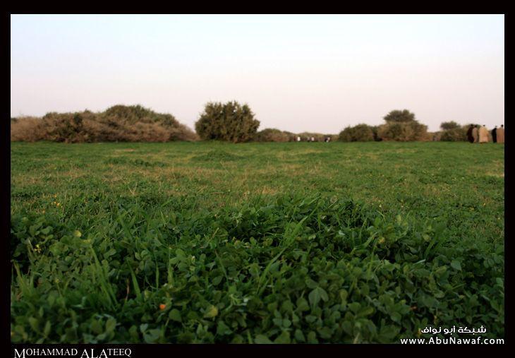 الخريم - عروس الرياض 17091_21231139266