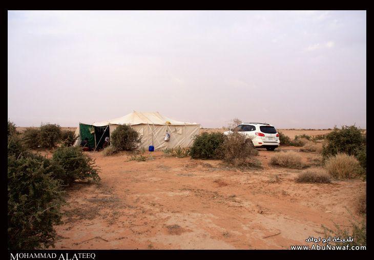 الخريم - عروس الرياض 17091_21231141471