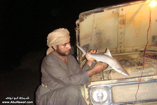 اليمن - صيد Thumb-6-2009-almlf_com_sm0fz4nr