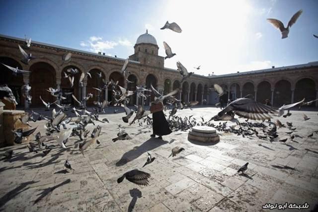 أغنى 15 دولة مسلمة في العالم Richest_Muslim_Countries_015