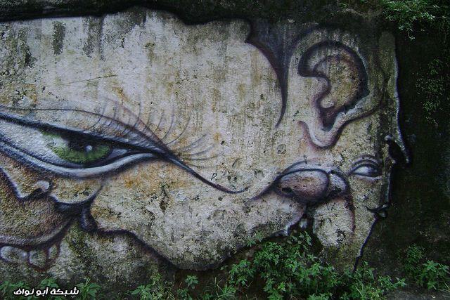 صور : رسام برازيلي  Street-art-brazil-13