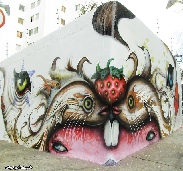 صور : رسام برازيلي  Street-art-brazil-4