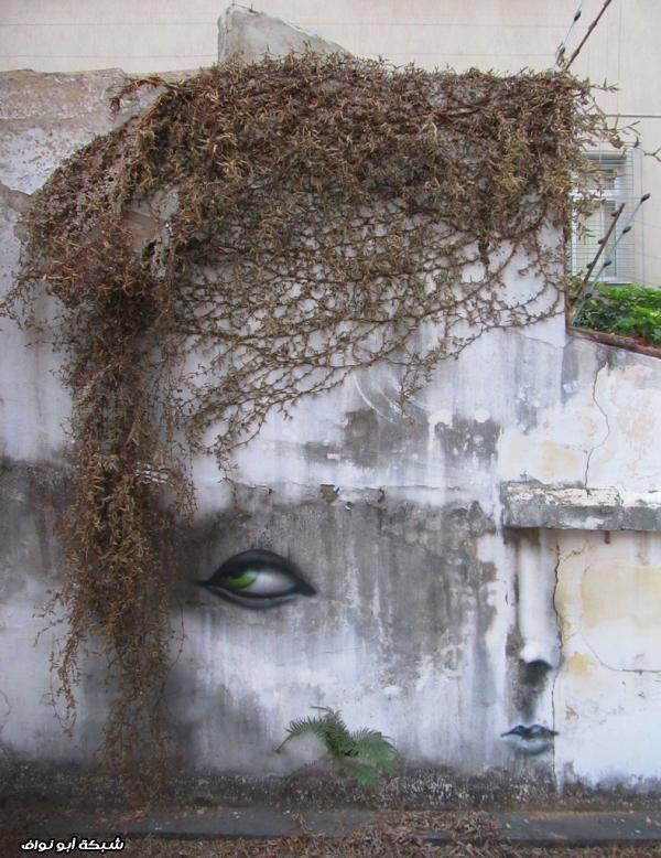 صور : رسام برازيلي  Street-art-brazil-6