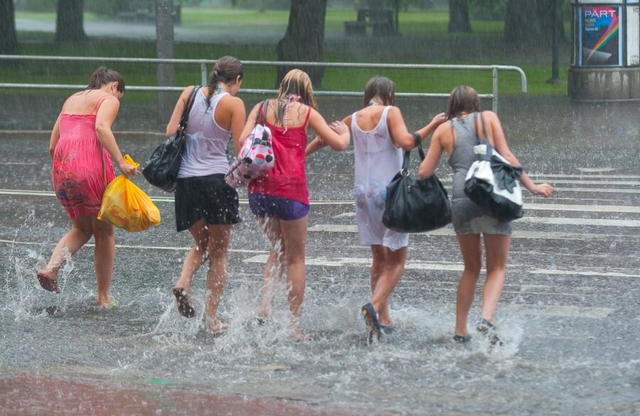 Pildijaht Paduvihm-suvi-uputus-vesi-vihm-vihmasadu-aikesevihm-68814603