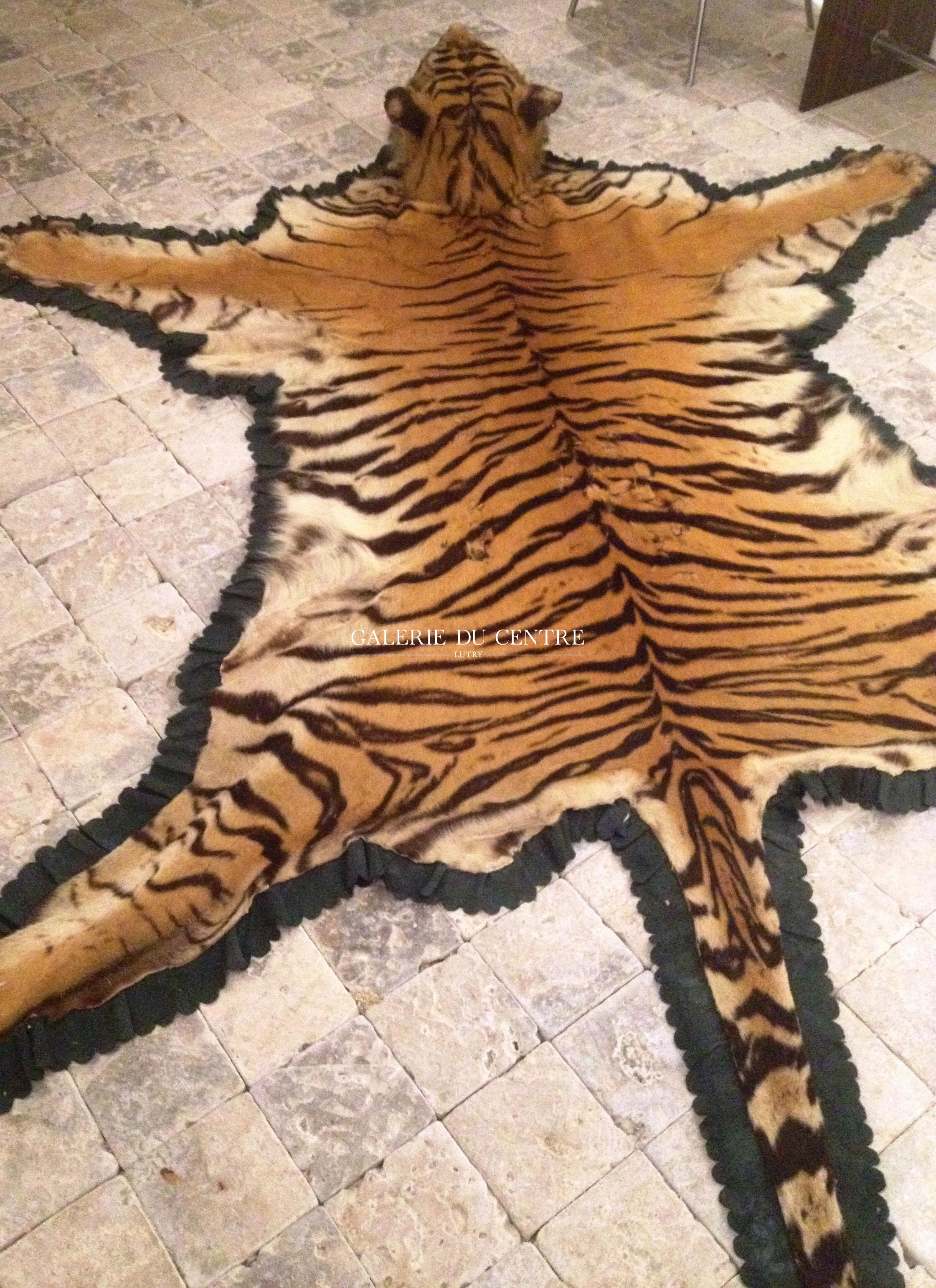 Guerrier Moghol Tigre-4