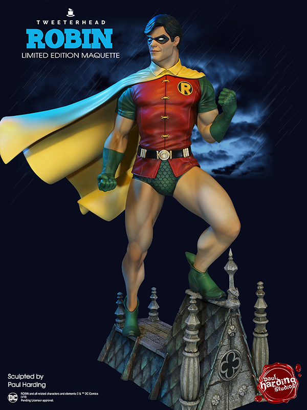SUPER POWERS ROBIN MAQUETTE Robin_06