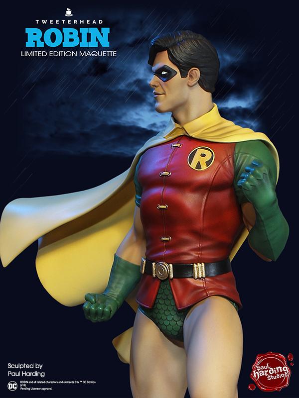 SUPER POWERS ROBIN MAQUETTE Robin_07