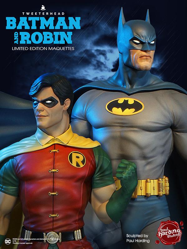 SUPER POWERS ROBIN MAQUETTE Robin_08