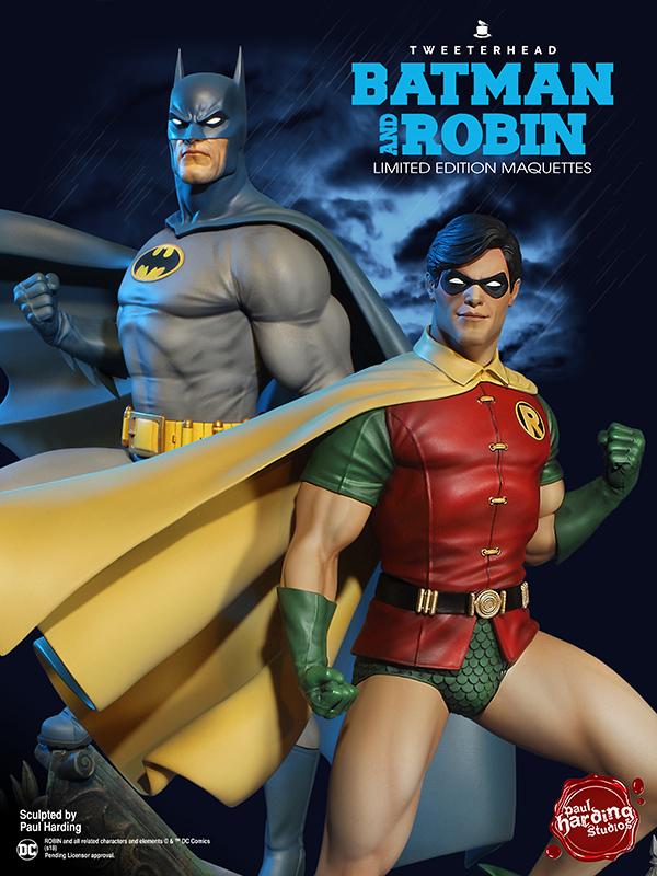 SUPER POWERS ROBIN MAQUETTE Robin_09