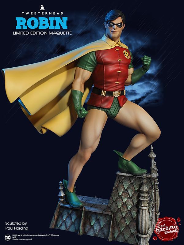 SUPER POWERS ROBIN MAQUETTE Robin_13