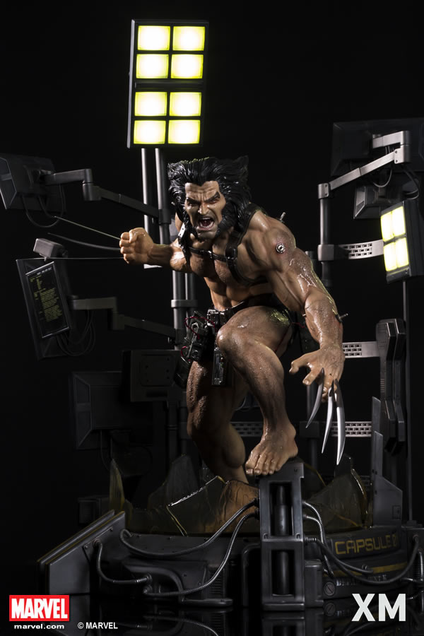 Premium Collectibles : Weapon X XM-weapon-x-premium-01