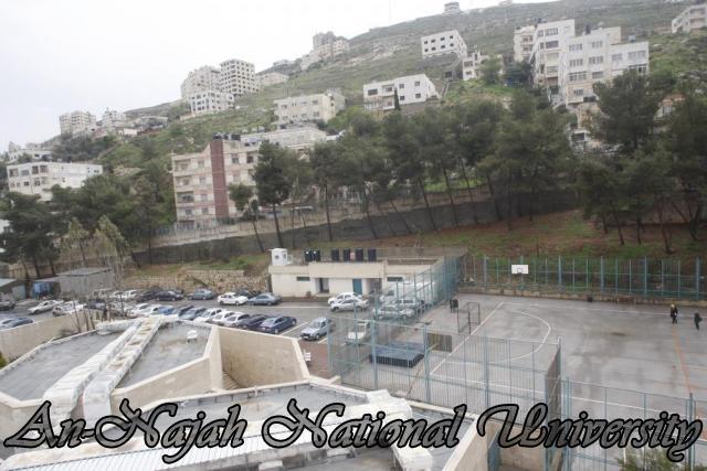 جولة مصورة في جامعة فلسطينية Old%20Campus%20(70)