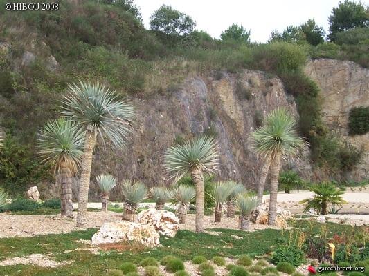 (44) Jardin Exotique de Pontpierre à Saint-Herblain GBPIX_photo_131815