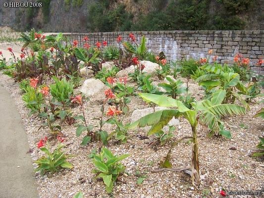 (44) Jardin Exotique de Pontpierre à Saint-Herblain GBPIX_photo_131830