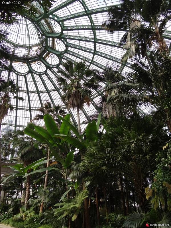 """Déficoncours """"Jardins sous verre"""" - Participations GBPIX_photo_520071"""