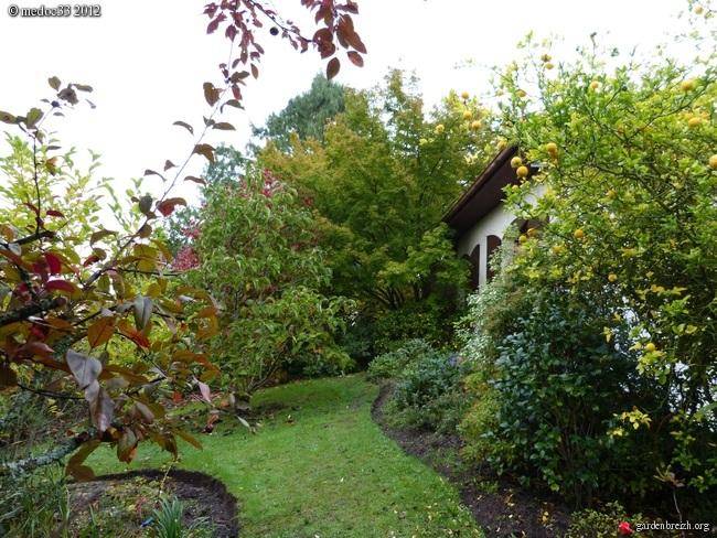 Mon jardin Médocain, quelques vues au fil du temps GBPIX_photo_546416