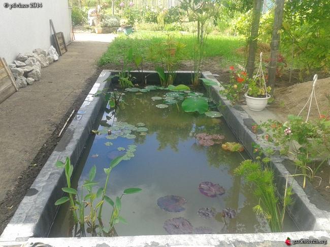 construction d'un bassin .. GBPIX_photo_632702