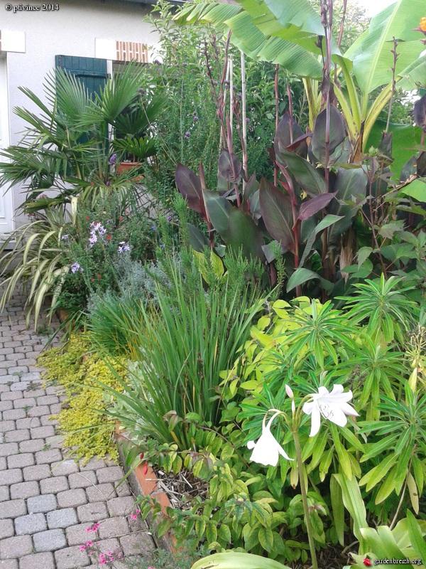 ambiances estivales au jardin - 2014 GBPIX_photo_635857
