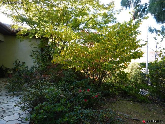 l'automne arrive... - Page 2 GBPIX_photo_640584