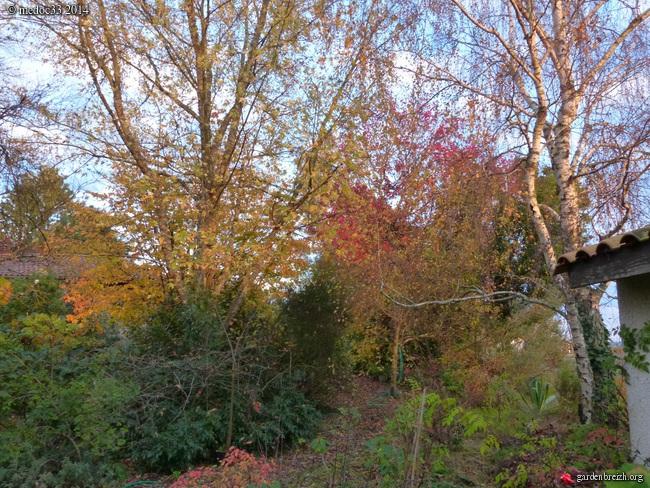 l'automne arrive... - Page 8 GBPIX_photo_641944
