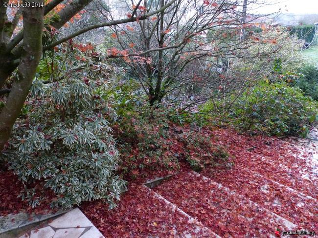 l'automne arrive... - Page 8 GBPIX_photo_644258