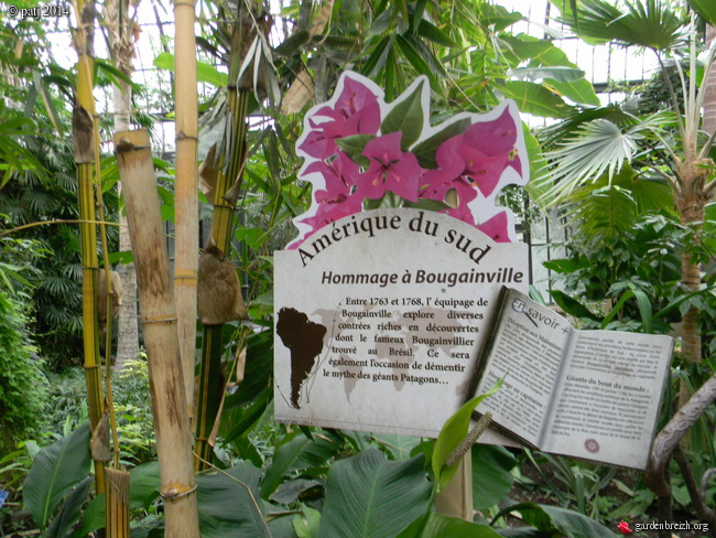 Les botanistes  - Page 2 GBPIX_photo_646216