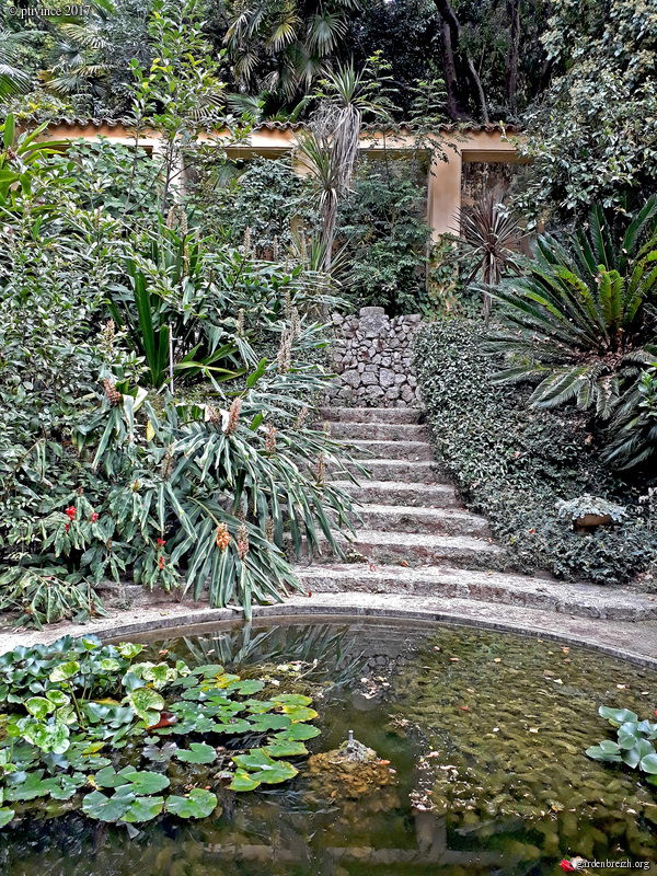 (06) Jardin des Serres de la Madone - Menton GBPIX_photo_761880