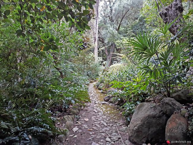(06) Jardin des Serres de la Madone - Menton GBPIX_photo_761883