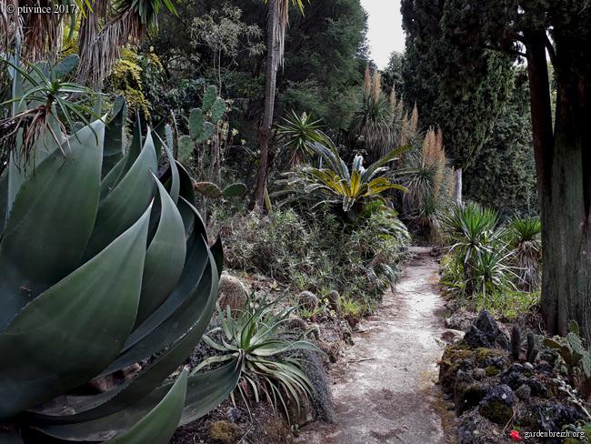 (06) Jardin des Serres de la Madone - Menton GBPIX_photo_761888