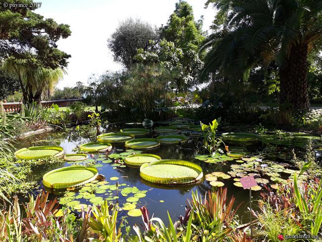(06) Jardin du Val Rhameh - Menton GBPIX_photo_763095
