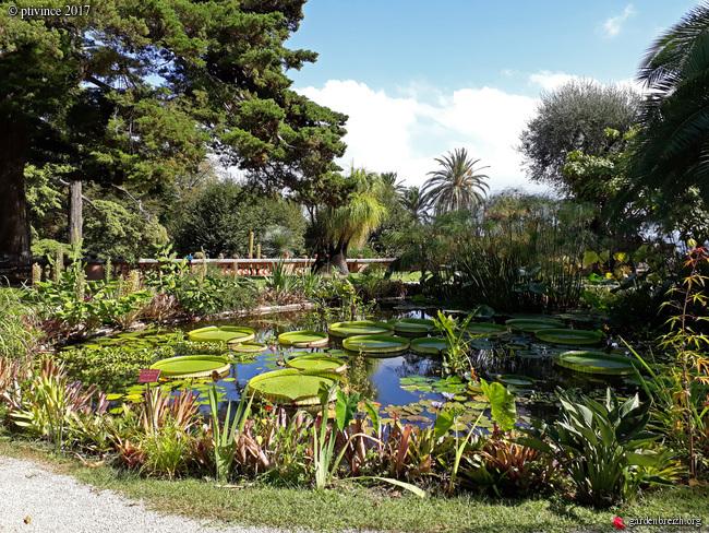 (06) Jardin du Val Rhameh - Menton GBPIX_photo_763096