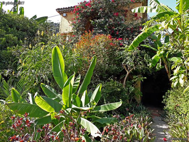 (06) Jardin du Val Rhameh - Menton GBPIX_photo_763113