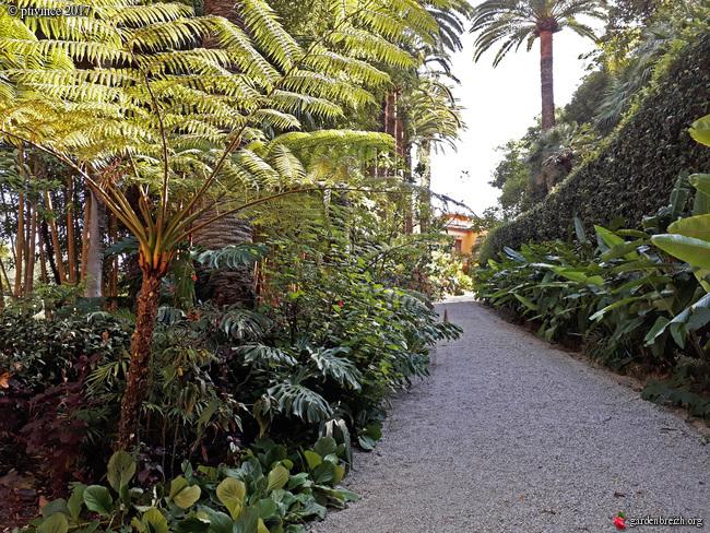 (06) Jardin du Val Rhameh - Menton GBPIX_photo_763122