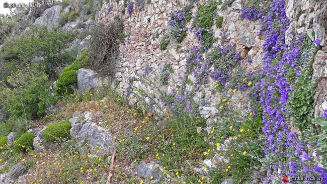 Grèce - tours et détours dans le Péloponnèse GBPIX_photo_778889