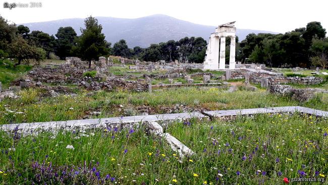 Grèce - tours et détours dans le Péloponnèse GBPIX_photo_779847