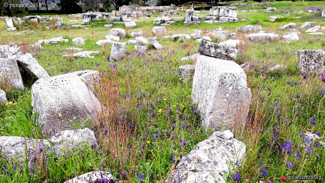 Grèce - tours et détours dans le Péloponnèse GBPIX_photo_779849