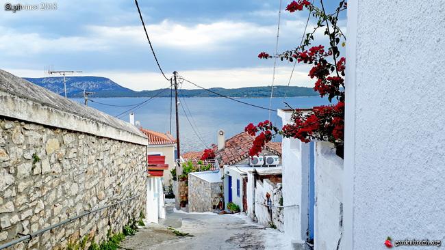 Grèce - tours et détours dans le Péloponnèse GBPIX_photo_779854