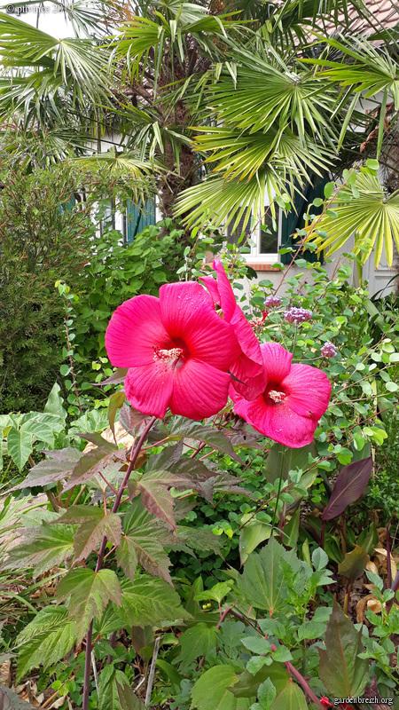 fin d'été en couleurs GBPIX_photo_814538