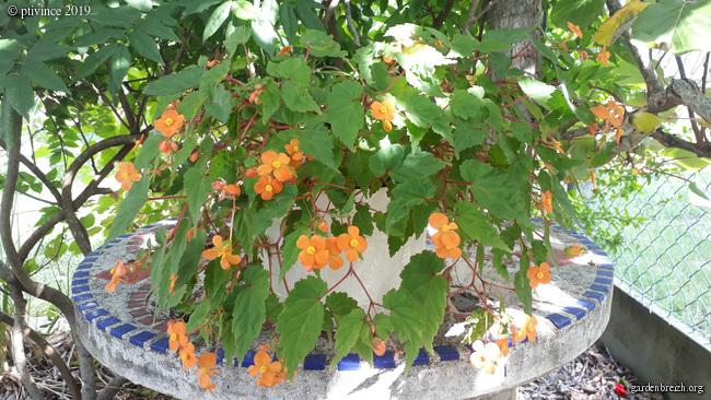 fin d'été en couleurs GBPIX_photo_814543