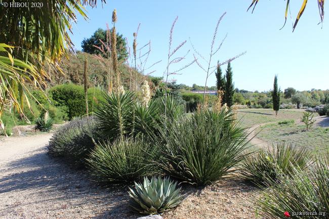 (44) Jardin Exotique de Pontpierre à Saint-Herblain GBPIX_photo_820278