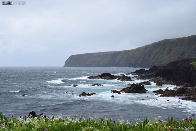 Portugal - Archipel des Açores - Ilha de São Miguel GBPIX_photo_822683