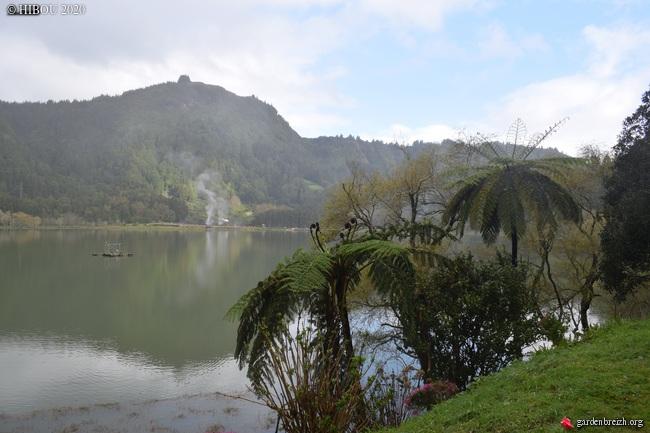 Portugal - Archipel des Açores - Ilha de São Miguel - Page 2 GBPIX_photo_822706