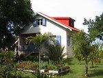 Le jardin tropical de Thierry GBPIX_vignette_86204